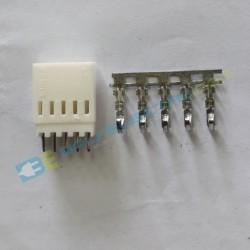 Socket Molek – 5Pin
