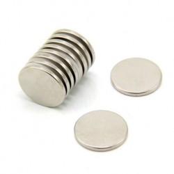Magnet Neodymium Bulat 30x5 mm